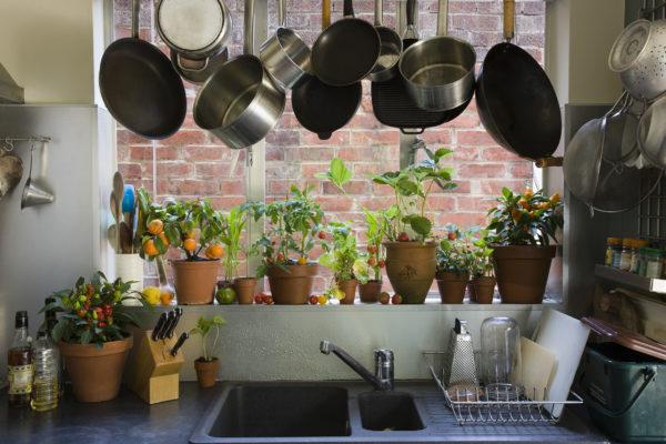 Размещение посуды на подоконнике
