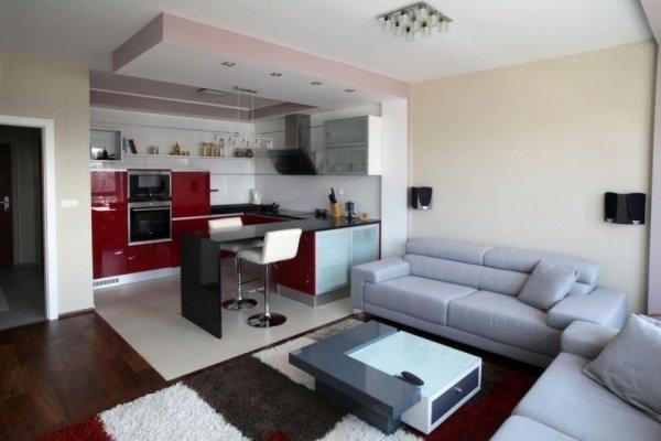 дизайн маленькой кухни студии совмещенной с гостиной фото