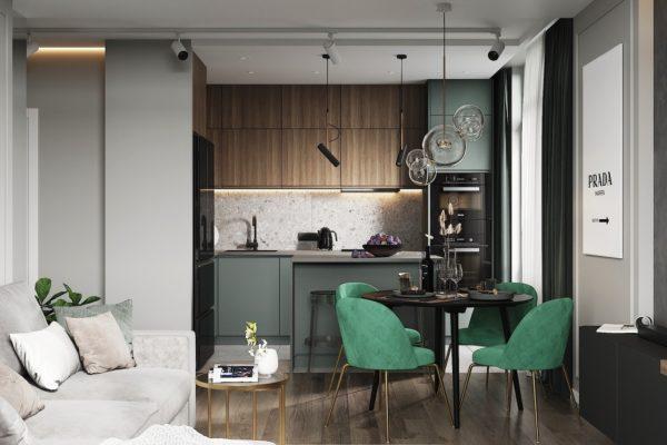 Кухня гостиная современный дизайн 1